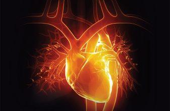 Τα σημάδια της καρδιάς