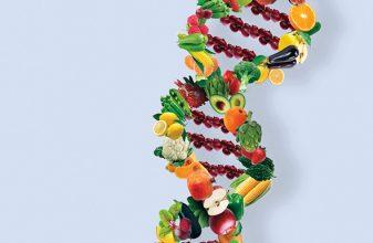 Τα γονίδια και ο ρόλος τους στη διατροφή μας