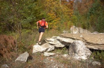 14th Virgin Forest Trail