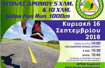 2ος Αλεξανδρινός Αγώνας Δρόμου 5 & 10 χλμ.