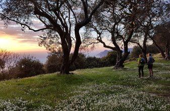 8ο Corfu Mountain Trail - σε εξέλιξη