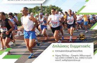 Pella Half Marathon 2014