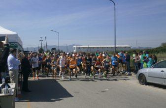 8ος Λαϊκός Αγώνας Δρόμου 8 χλμ. «Άγιος Αρτέμιος»